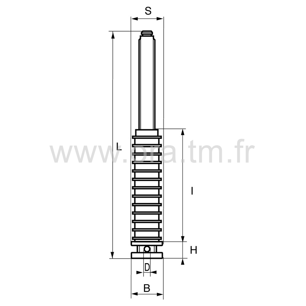 IVI - INSERT VERIN - SECTION CYLINDRIQUE