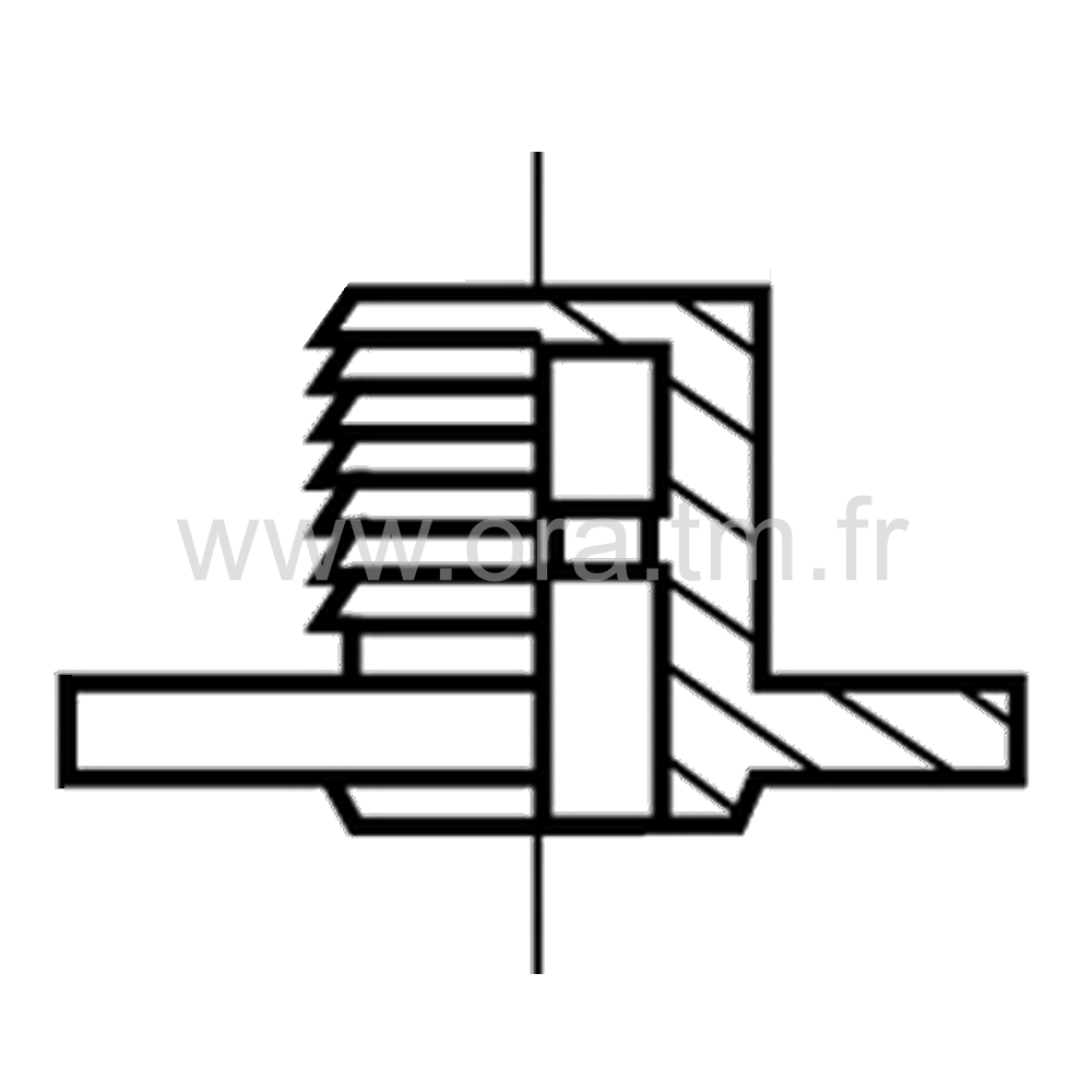 DYNA - ROULETTE DOUBLE GALET - ROULEMENT LIBRE & FREINE